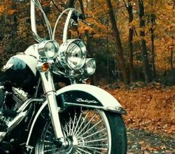 Best Ape Hangers for Softail Deluxe