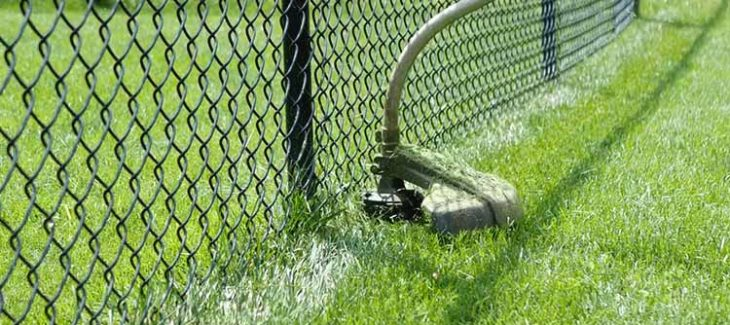 Best Weed Eater String for Chain Link Fence